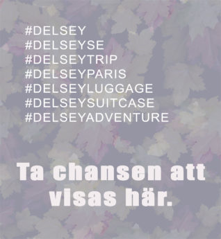 ta chansen att visas här_delsey
