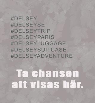 Ta_chansen_att_visas_har_Delsey_2018