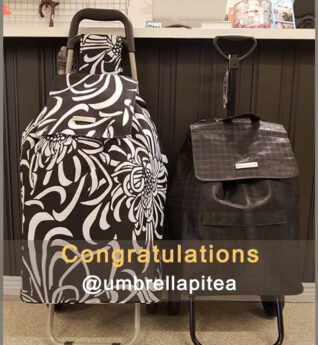 congratulations@umbrellapitea